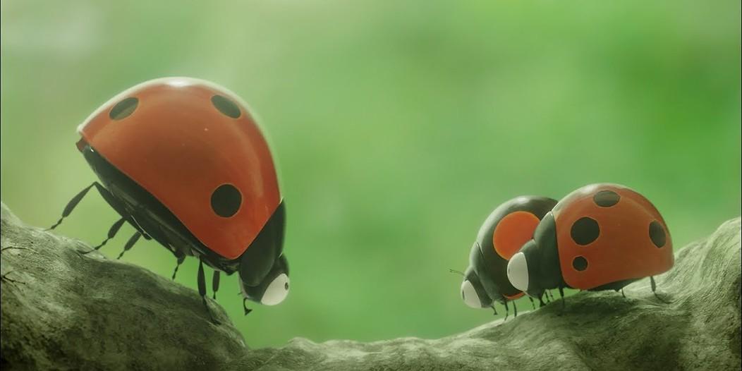 Robaczki z zaginionej dżungli